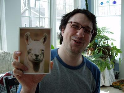 Matt's Llama Face